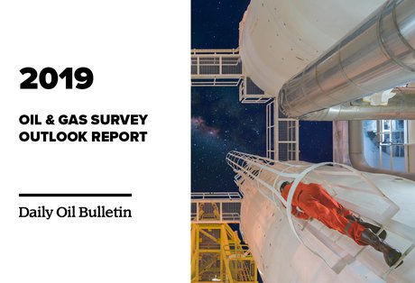 2019 Oil & Gas Survey Outlook Report